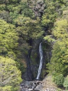 定入滝を望む(宮川ウォーク、宮川ダム〜大杉谷橋)