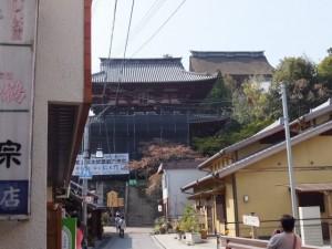 金峯山寺仁王門と蔵王堂の屋根