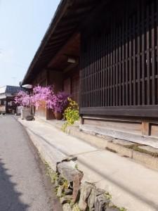 宿坊 喜蔵院〜桜本坊