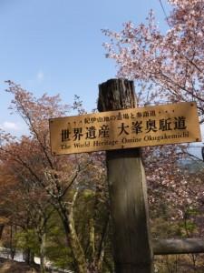 「世界遺産 大峯奥駆道」の案内板(横川覚範の首塚付近)