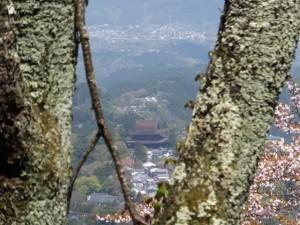 横川覚範の首塚から花矢倉への上りの山道から望む金峯山寺 蔵王堂