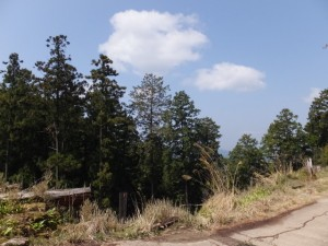 「吉野三橋の一 丈之橋跡」の標石付近