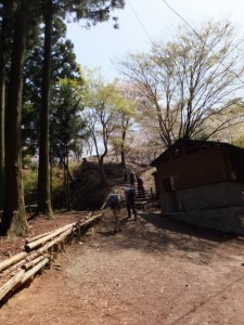 高城山展望台(吉野水分神社〜金峯神社鳥居)