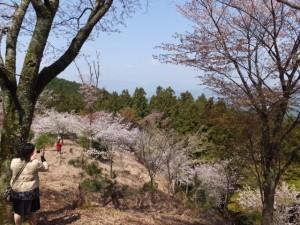 高城山展望台への登りの途中で