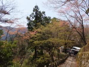 高城山展望台からの下り坂