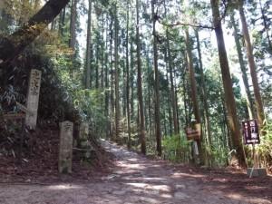「左 大峰山、右 風閣寺」の分岐、観桜期のみ西行庵は右