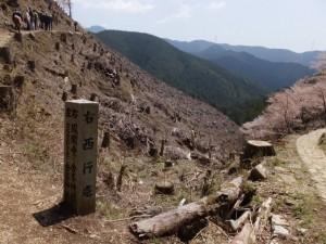 苔清水付近の道標と奥千本