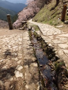 苔清水の流れ