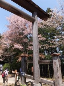 修行門(金峯神社の鳥居)