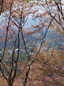 吉野 上千本の眺望