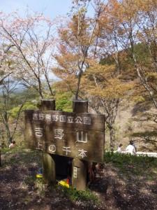 吉野熊野国立公園 吉野山 上千本の案内板