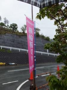 横輪桜の里の幟(伊勢市横輪町)