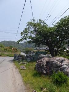 日の出橋(五十鈴川派川)〜神前神社