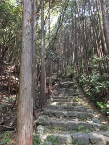 石階が続く長い参道(神前神社)