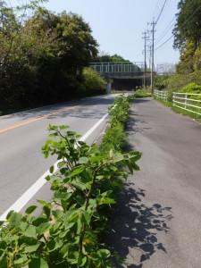 国道42号、松下跨線橋付近
