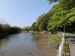 松下社付近の池