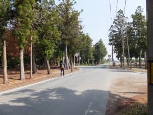 坂本古墳群付近の十字路(明和町)