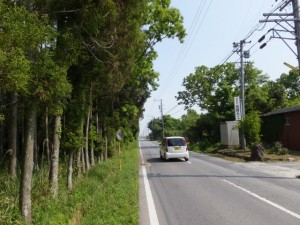 坂本古墳群付近から須田公民館方向へ(多気郡明和町)