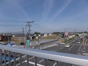 国道23号 高向交差点付近の歩道橋から望む宇須乃野神社および高向大社の社叢