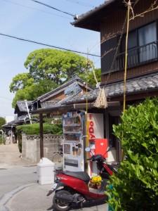 宇須乃野神社の社叢の遠望
