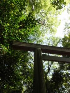 宇須乃野神社(懸神社を同座)