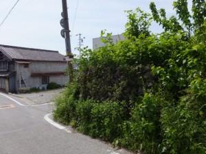 旧跡 宮川・桜の渡し(下の渡し)の説明板前から宮川堤へ