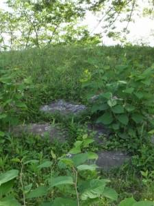 周防堤に残されている石張(改修工事が開始された宮川堤)