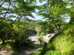 近長谷寺へ続く長谷観音道にて振り向いて