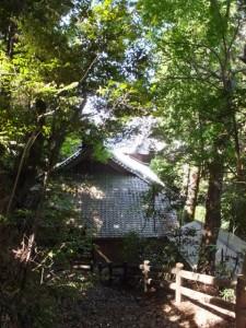 近長谷城跡への階段途中から望む近長谷寺の庫裡および本堂の屋根