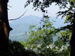 近長谷城跡への階段の途中からの風景