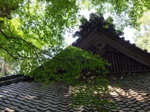 近長谷寺の庫裡