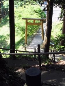 近長谷寺から林道側への下り坂道