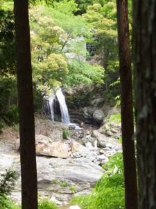 うおどめの滝(八知山谷出合の案内板の先)