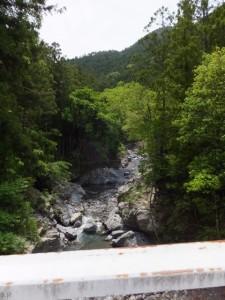 島谷橋から望む島谷川の上流側