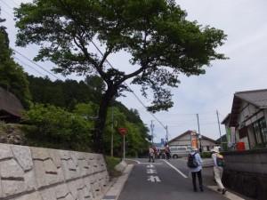 旧領内橋(宮川)〜小滝 バスのりば