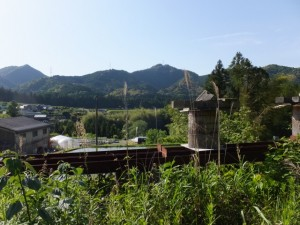 本田の渡し跡(宮川)への分岐付近からの宮川方向の遠望
