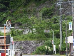 JR紀勢本線 賀田駅付近