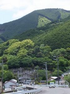 熊野古道伊勢路 曽根次郎坂の登り口付近