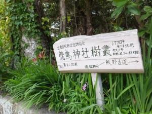 飛鳥神社樹叢ほかの案内板(尾鷲市曽根町)