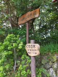 三重県の県下第3位の木の案内板(飛鳥神社)