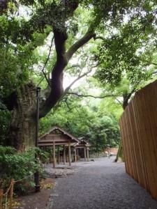 高河原神社への参道(月夜見宮)