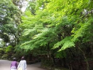 子安神社、大山祇神社(内宮)