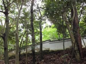 大水神社から見上げた林崎文庫の土塀