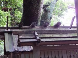 大水神社(川相神社、熊淵神社を同座)