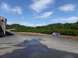 あじさいまつり駐車場(川原製茶資材置き場)