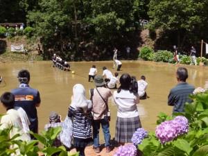 水土里の祭典 彦左衛門の田んぼの綱引き大会(多気町丹生)