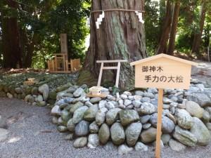 御神木 手力の大桧(佐那神社)