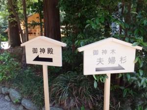 「←御神殿」「御神木 夫婦杉→」の案内板(佐那神社)
