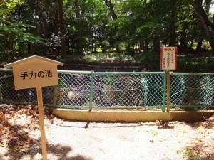 御神殿の裏手にある手力の池(佐那神社)