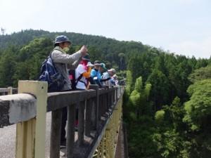 船木橋から宮川の上流方向を望む